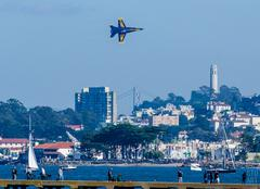campaign to bring blue angels to fleet week started online